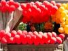 regenbogenparade-2013-11